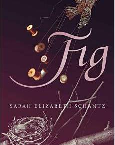 "Book Review of ""Fig"" by Sarah Elizabeth Schantz"